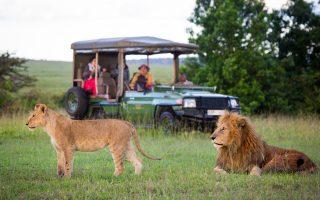 3 days Nakuru Wildlife safari