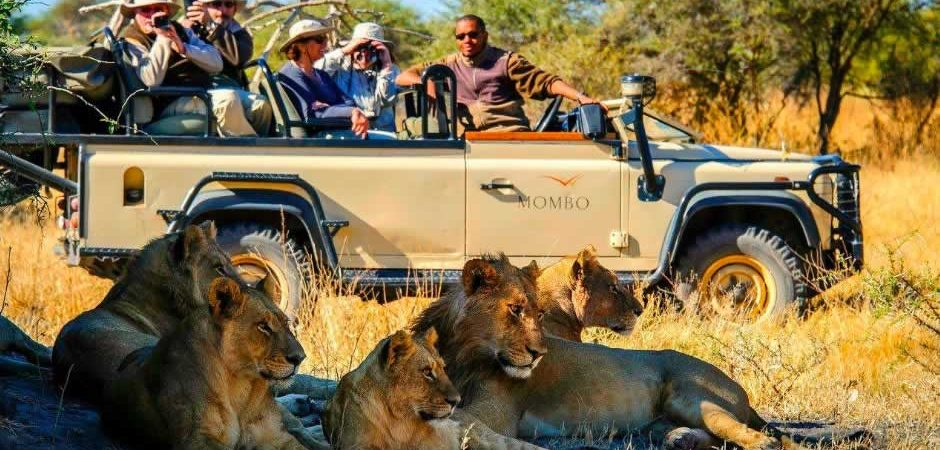 4 Days Masai Mara Budget Camping safari