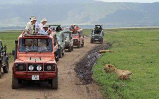 4 Days Serengeti & Ngorongoro crater safari