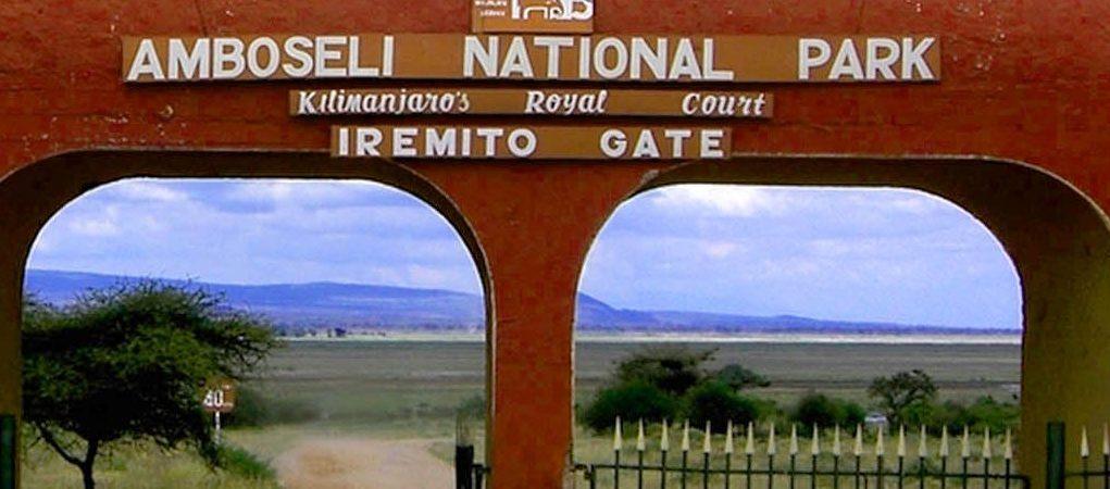 Amboseli National Park fees