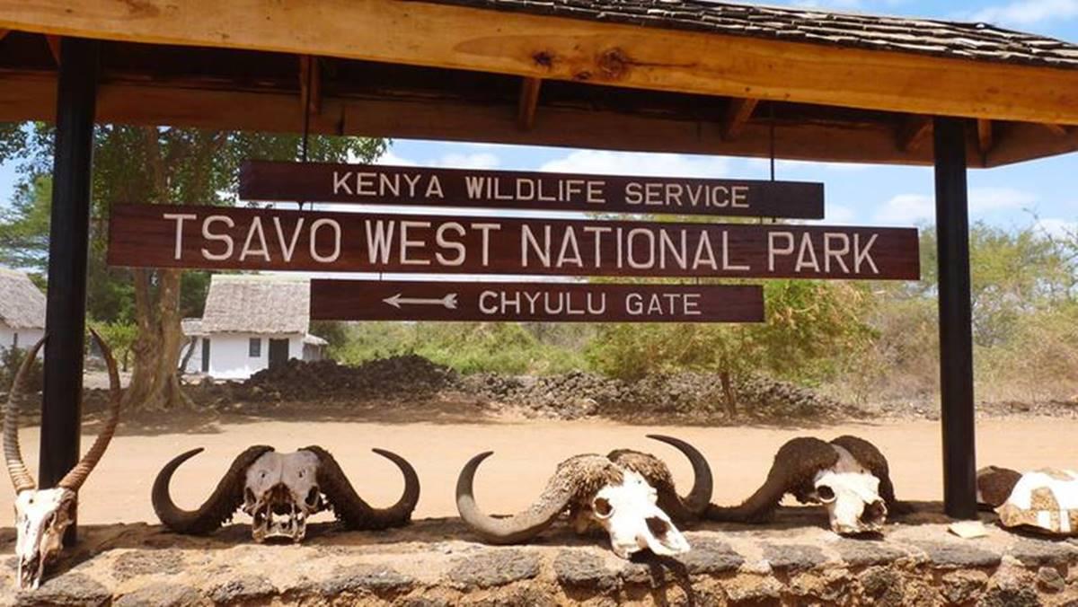 Tsavo West National Park fees | Kenya Safari Tour Requirements