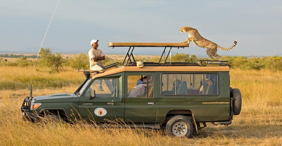 Game viewingin Maasai Mara national reserve