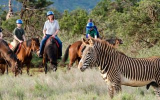 7 Days Kenya Family Safari