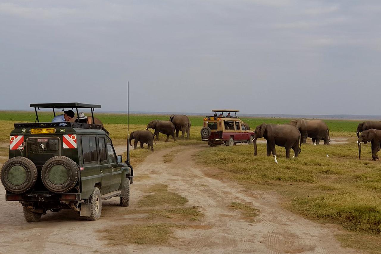 game drive in the plains of Lake Nakuru national park